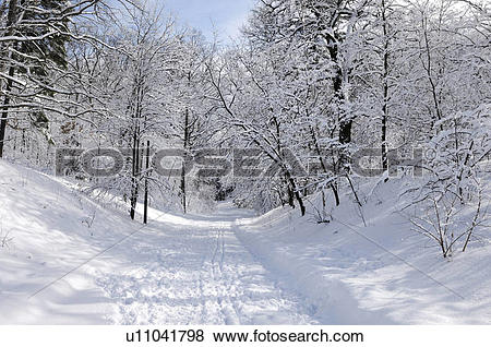 Pictures of Beautiful winter nature Road through a park covered.