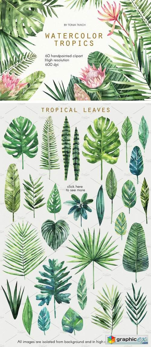 Watercolor Tropics » Free Download Vector Stock Image.