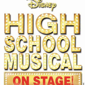 High School Musical on Stage! plot summary, character.