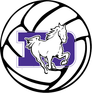 St. Francis DeSales High School Volleyball.