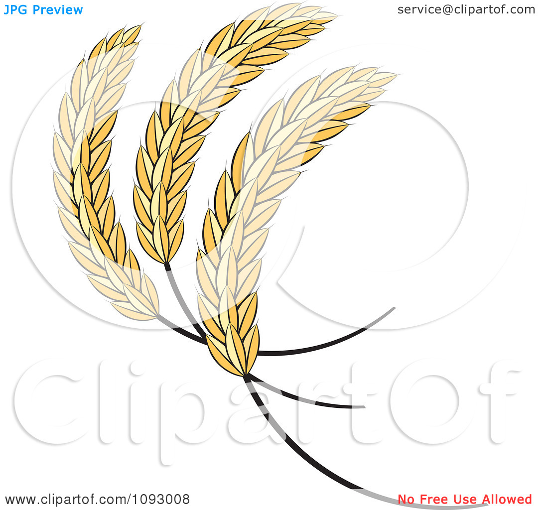 Clipart Golden Sheaves Of Wheat.