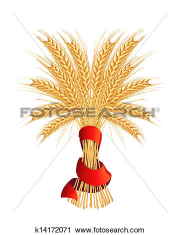 Clipart of Sheaf of wheat, vector k14172071.