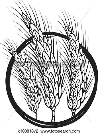 Clipart of Sheaf of wheat vector k10381872.