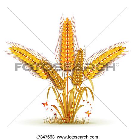 Clipart of Wheat sheaf k7347663.