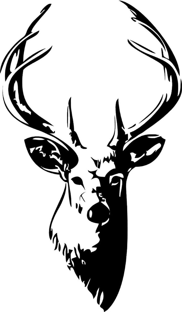 Elk Head Black And White