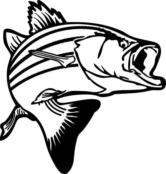 Jumping Bass Fish Clip Art.