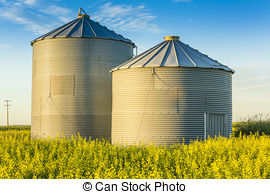 Grain bin Stock Photo Images. 958 Grain bin royalty free pictures.