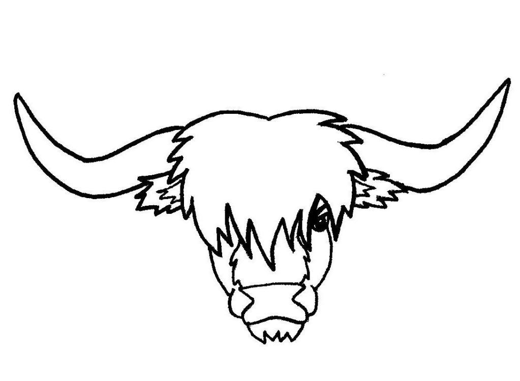 Highland cattle clipart.