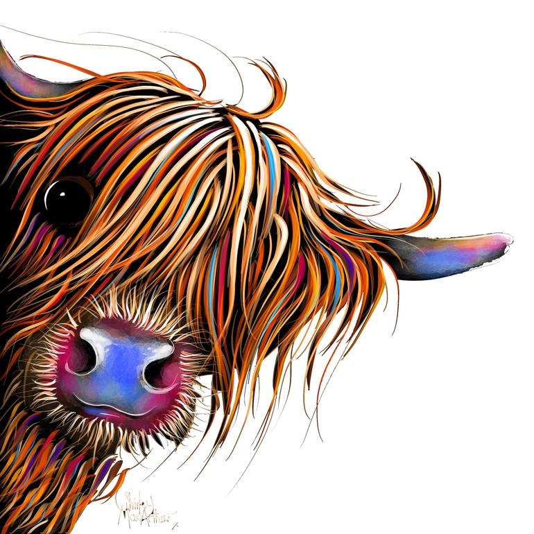 Highland Cow Prints \' SuGaR LuMP oN WHiTe \' BY SHiRLeY MacARTHuR.