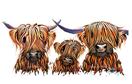 HiGHLaND CoWS PRiNT BoX CaNVas (WaLL ART, CoW PRiNT, CoW CaNVaS, SCoTTiSH  GiFTS) FROM PAINTING LARGE 20 x 20 INCH Highland Cows \' THe TaNGeRiNeS 3 \'.