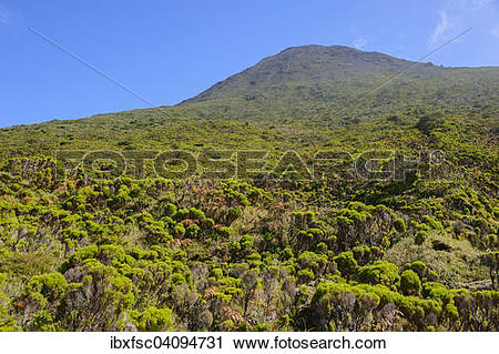 Stock Photography of Mount Pico, Highlands Region, island of Pico.