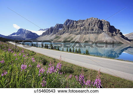 Stock Photo of The Icefields Parkway (Highway 93 North) from Banff.