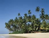 Stock Photography of Sri Lanka, Hikkaduwa, Hikkaduwa Beach, Sea.