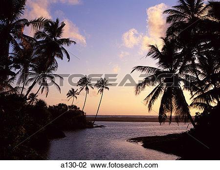 Stock Photo of Sri Lanka, Hikkaduwa Beach a130.