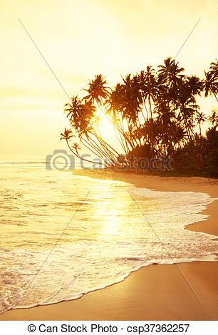 Stock Images of SRI LANKA HIKKADUWA BEACH.