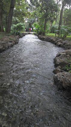 Macuiltepetl (Volcan y Parque Ecológico localizado justo al centro.
