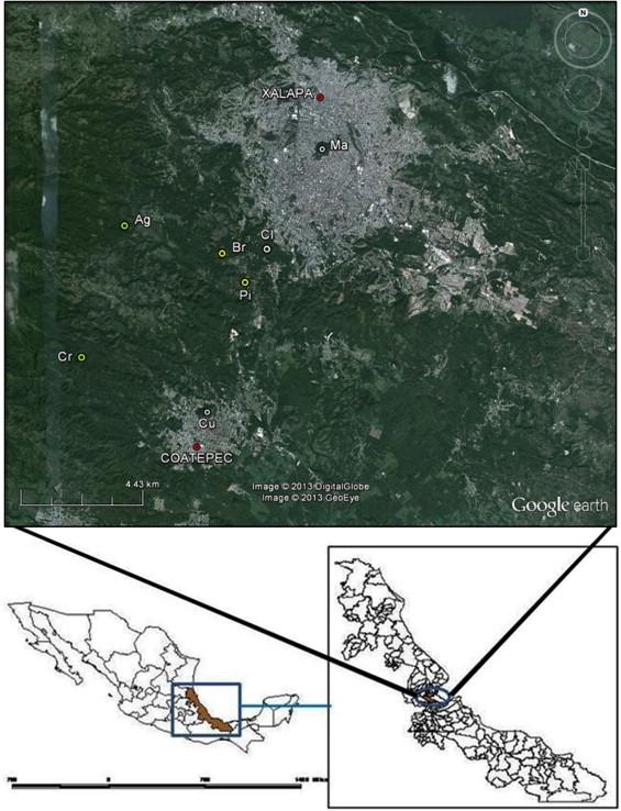 Butterfly diversity in a regional urbanization mosaic in two.