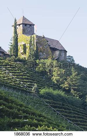 Stock Images of castle on the top of a hillside vineyard, alto.