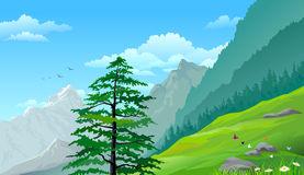 Hillside Stock Illustrations.