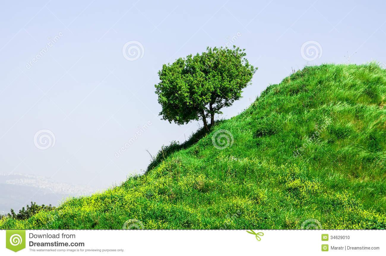 Attractive Hillside Landscape #1.