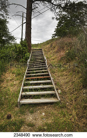Stock Photography of Wooden steps going up a hillside; Kelowna.