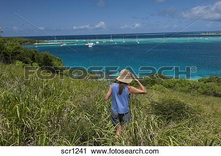 Stock Photography of Caribbean Islands. St. Vincent and the.