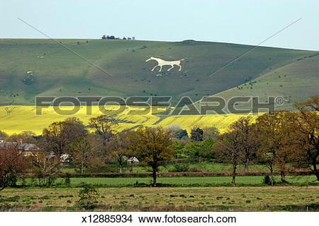 Stock Photo of UK, England, Wiltshire, Vale of Pewsey, white horse.