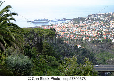 Picture of Dramatic Madeira Hillside View and Red Roof Tops.