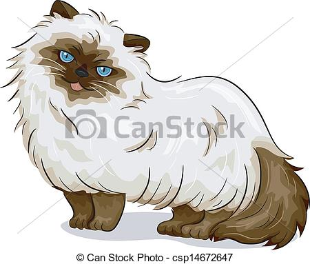 Himalayan Cat Clipart.