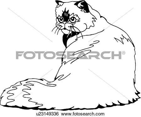 Clip Art of , animal, breeds, cat, feline, himalayan, u23149336.