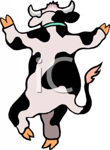 Behind of a Cow on Its Hind Legs.