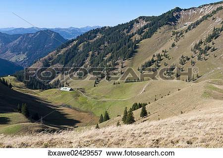 "Picture of ""Zipfelsalpe alpine pasture, Hintersteiener Tal Valley."