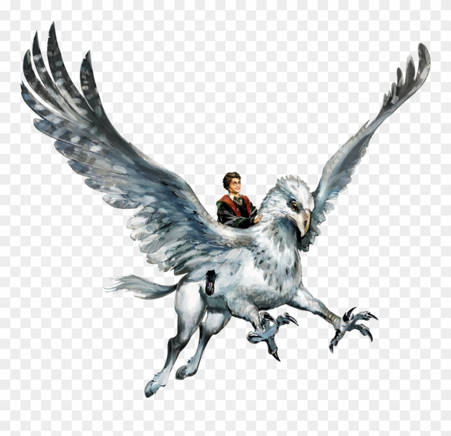Hyppogriff Clipart Harry Potter Hippogriff.
