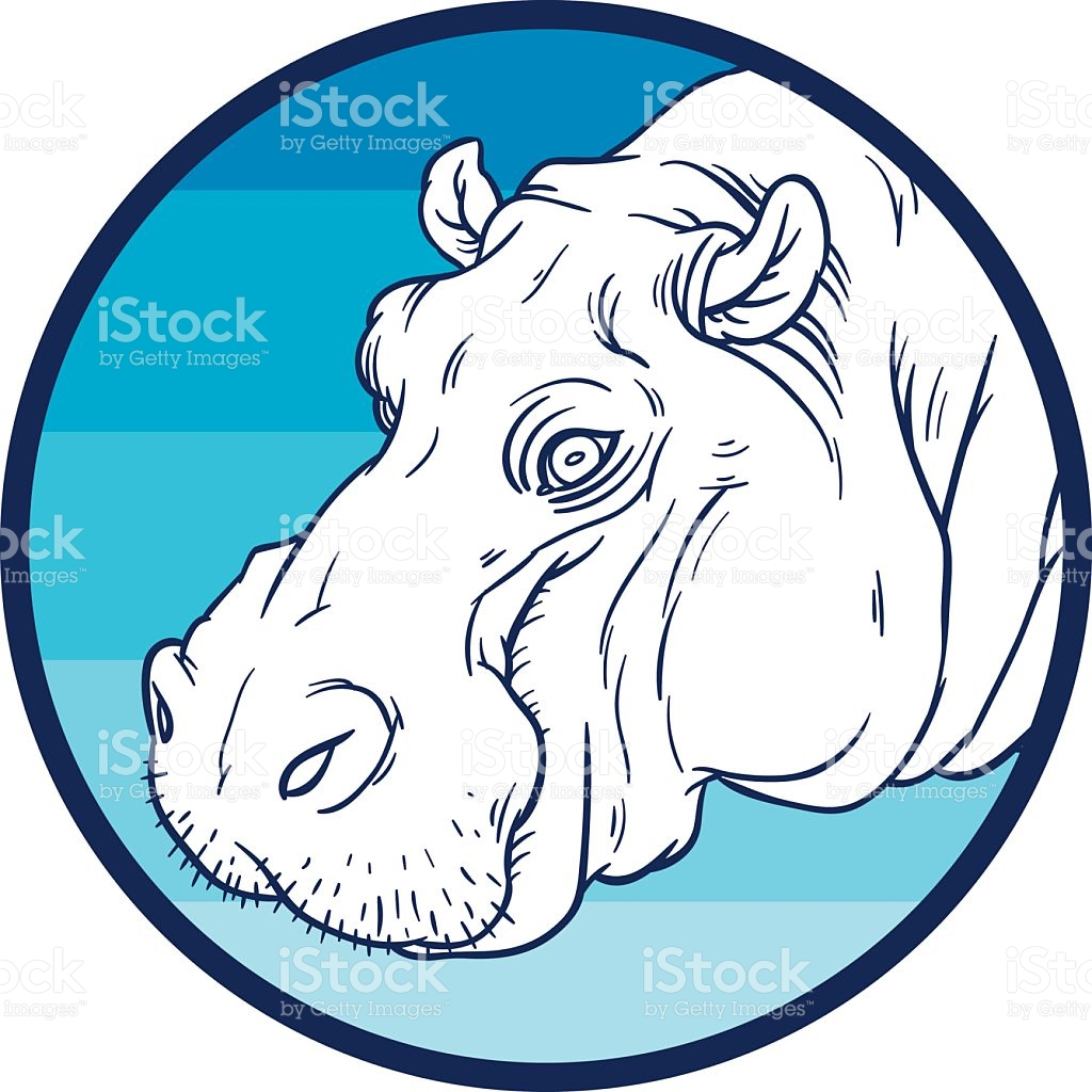 Hippopotamus Amphibius Or River Horse stock vector art 479057702.