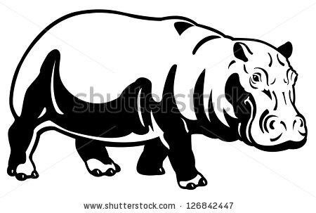 Hippopotamus Amphibius Stock Photos, Royalty.