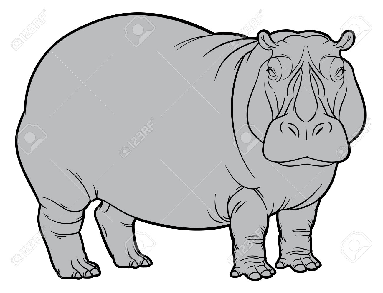 Naturalistic Vector Hand Drawing Illustration Of Hippo Or.