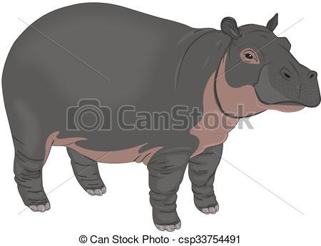 EPS Vectors of Hippopotamus or Hippopotamus amphibius.