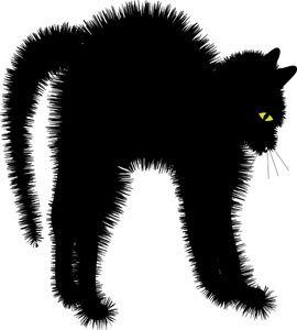 Scaredy Cat. \