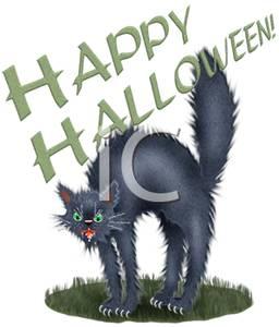 Black Halloween Cat Hissing.