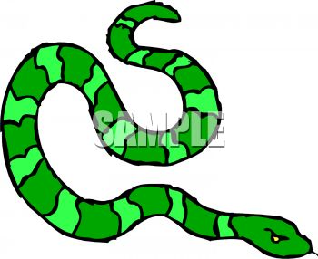 Picture of a Green Striped Snake Hissing In a Vector Clip Art.