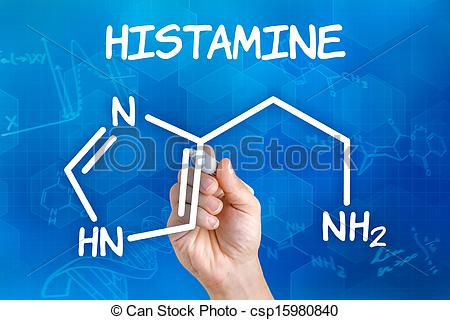 Histamine Clipart and Stock Illustrations. 141 Histamine vector.