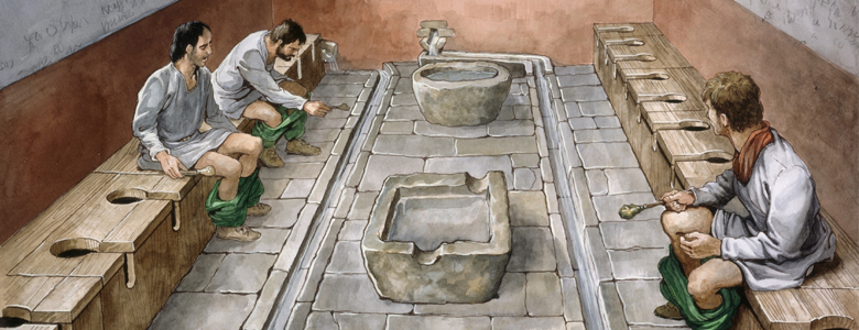 1000+ images about Toilets on Pinterest.