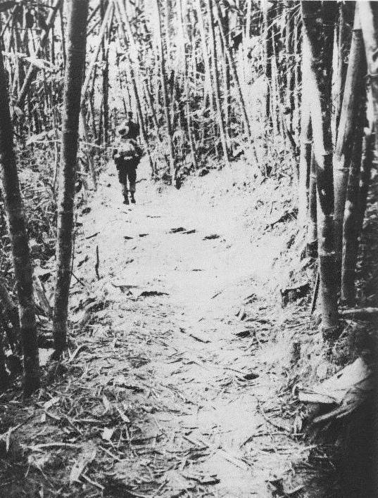 1000+ images about Vietnam War on Pinterest.