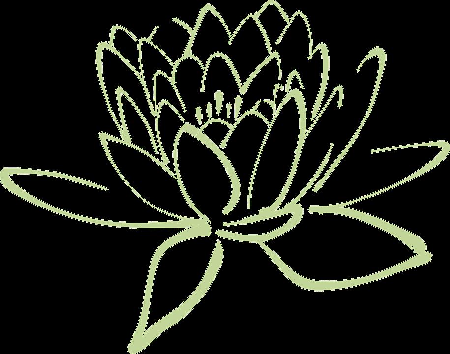 Đồ họa vector miễn phí: Hoa Sen, Sen, Hoa, Lily Nước.