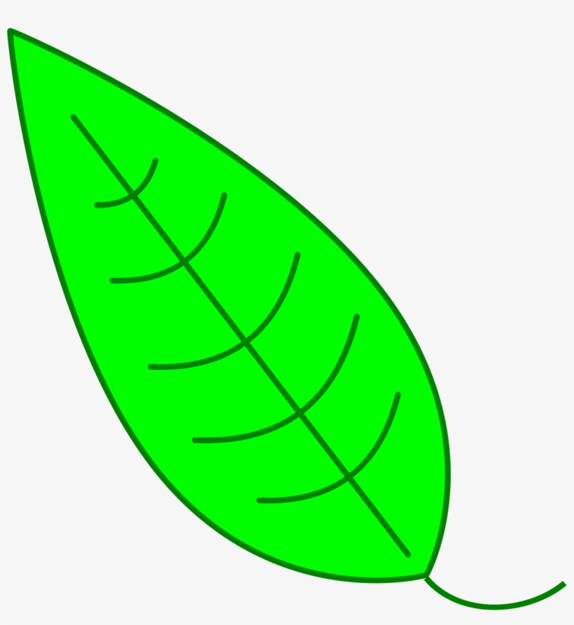 Leaf Clipart Simple.