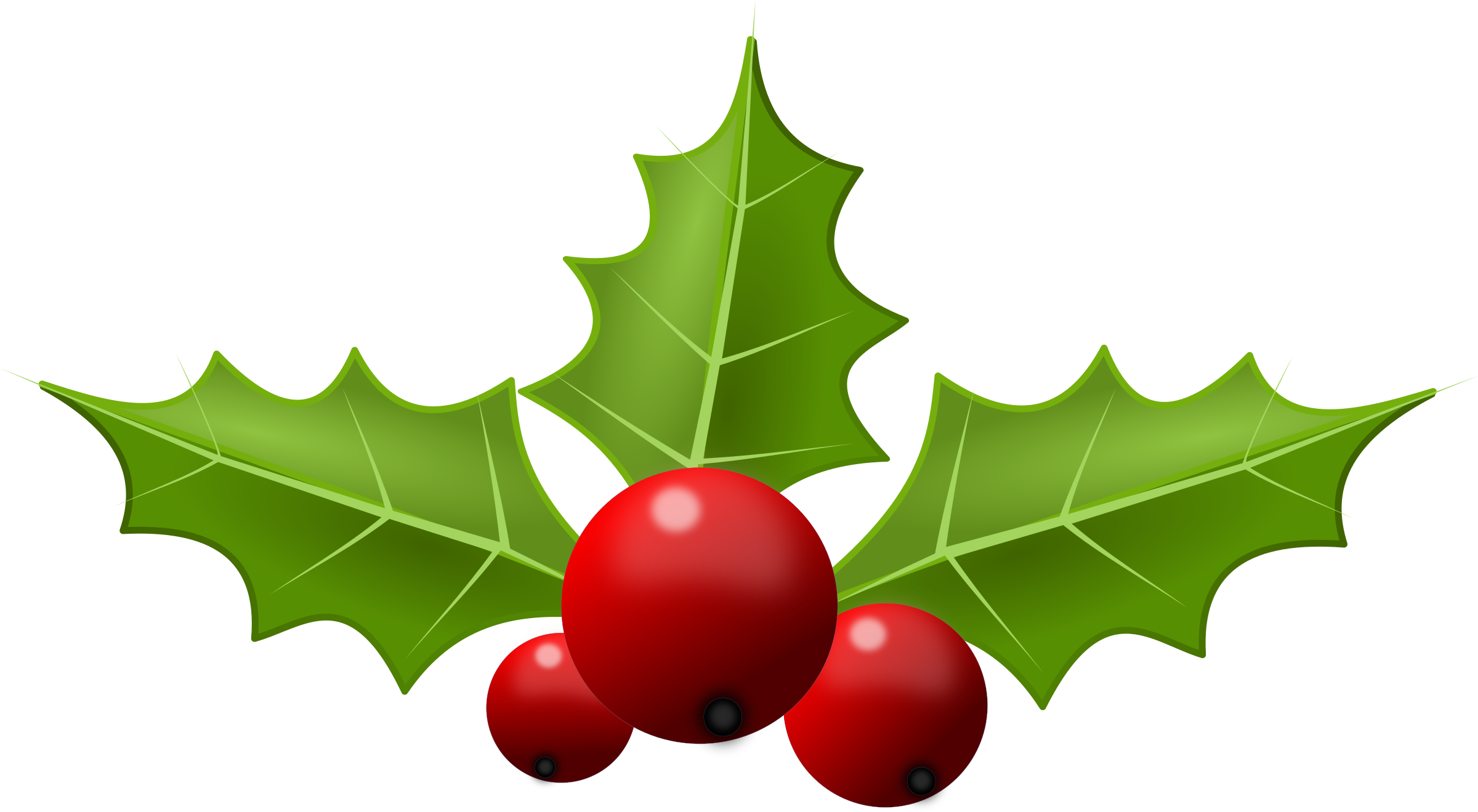 Holiday clipart holly, Holiday holly Transparent FREE for.