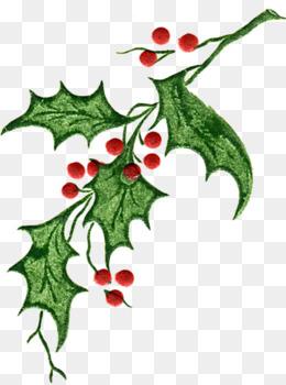 Holiday Greenery Clipart.