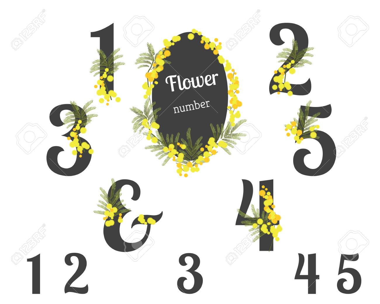 Abstract flower spring illustration. Mimosa flowers. Numbers...