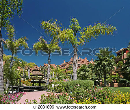 Stock Images of Palm trees in garden of Spanish holiday village.