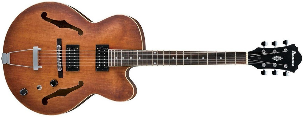 19 Mainline and Custom Hollow Body Electric Guitars.